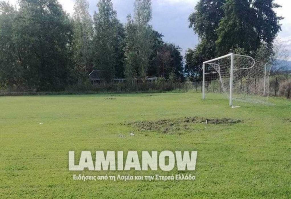Φθιώτιδα: Αγριογούρουνα όργωσαν ποδοσφαιρικό γήπεδο (ΦΩΤΟ)