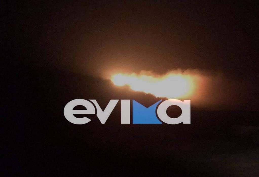 Εύβοια: Φωτιά σε δασική έκταση στην Κάρυστο