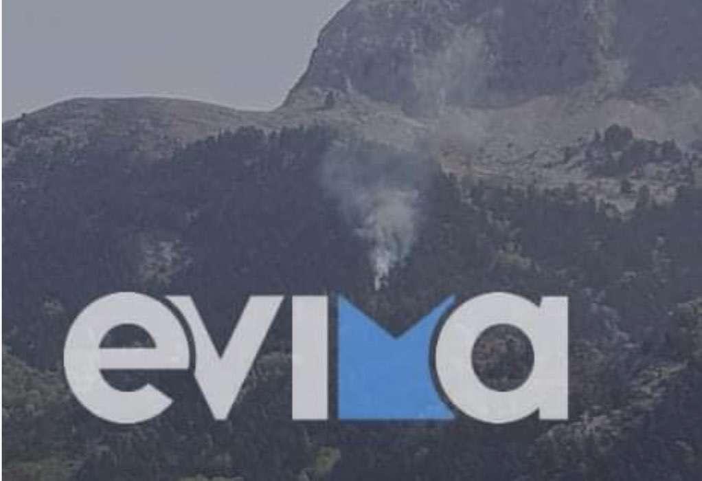 Εύβοια: Φωτιά στο χωριό Καμπιά σε δασική έκταση