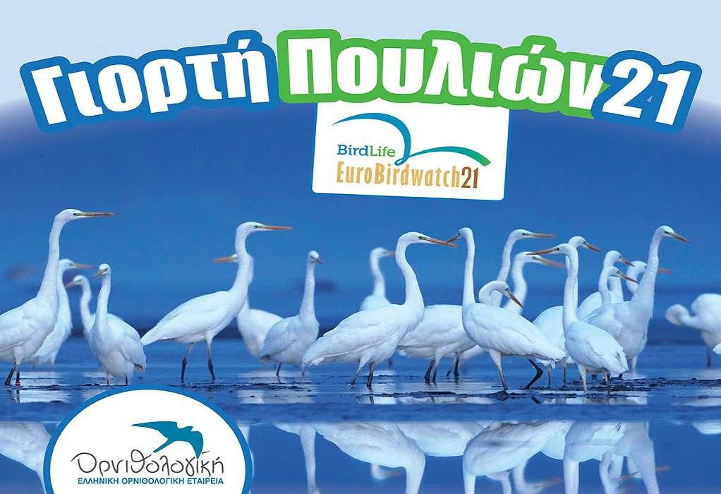 Θεσσαλονίκη: Γιορτή Πουλιών την Κυριακή με απελευθέρωση πουλιών στο Καλοχώρι