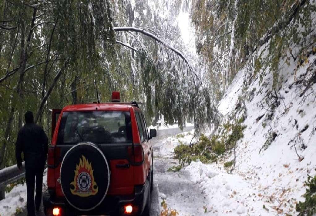 «Μπάλλος»: Έπεσαν δέντρα στο Βίτσι – Οδηγός απεγκλωβίστηκε από την Πυροσβεστική (ΦΩΤΟ)