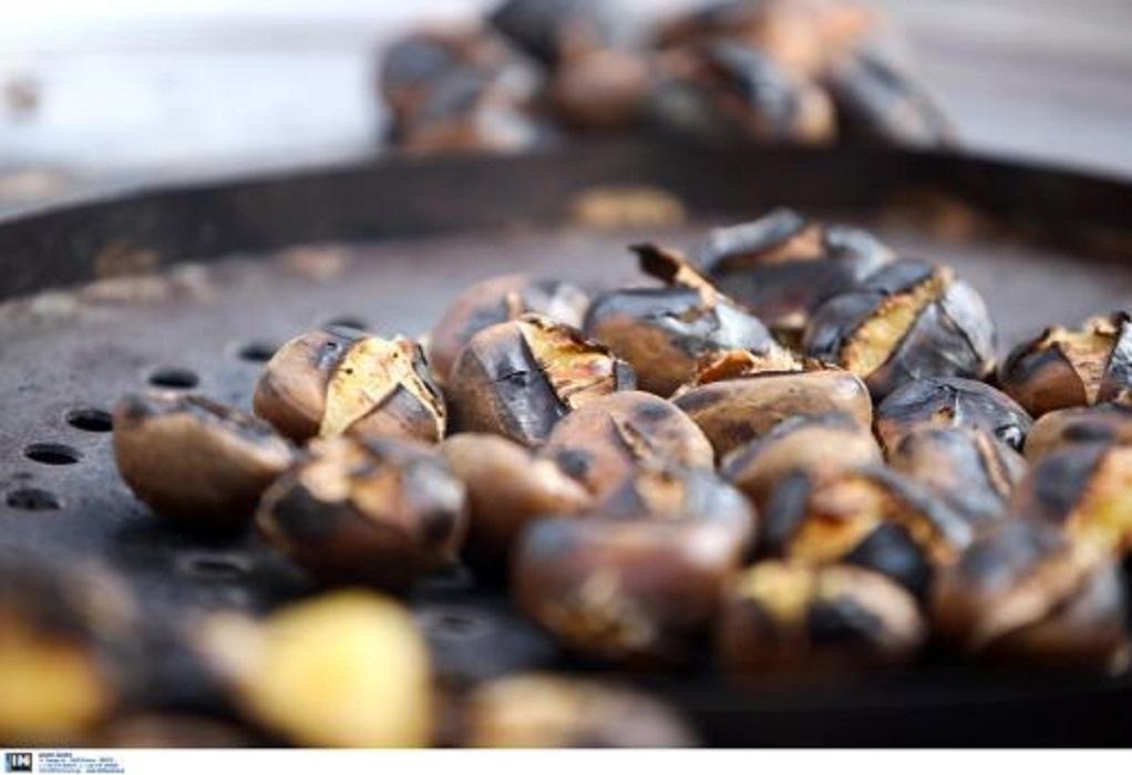 Ζημιές στα κάστανα από την κακοκαιρία: Αποζημιώνονται οι παραγωγοί από τον ΕΛΓΑ