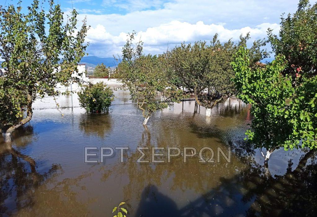 Σέρρες: Πλημμύρισαν σπίτια έπειτα από υπερχείλιση καναλιού (ΦΩΤΟ)